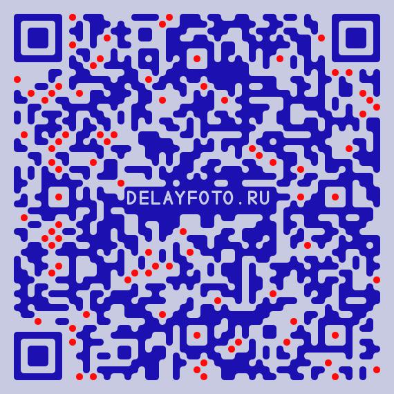 QR-код delayfoto.ru