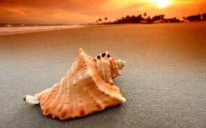 Идеи для пляжной фотографии