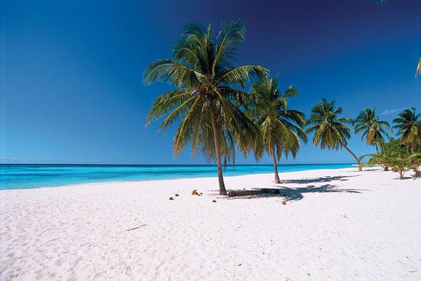 пейзажная пляжная фотография