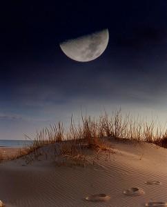 Как правильно фотографировать луну