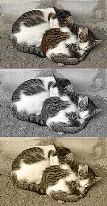 Функция тонирования изображений