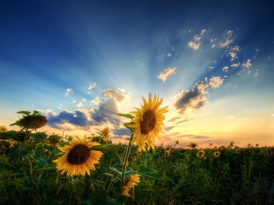 Ключевые моменты пейзажной фотосъемки
